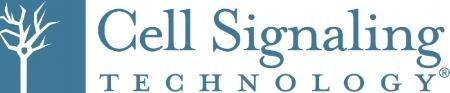 CST_2015_Logo.jpg