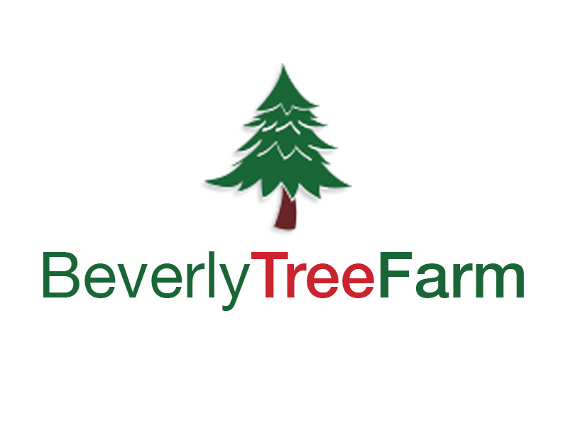 Bev Tree Farm logo.jpg