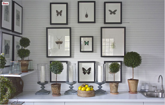 This is Ms. Roehm's greenhouse. The butterfly and bug specimens were purchased from Christopher Marley, an artist who creates stunning mosaics of insects. Read about how he turned a fear of bugs into his life's work on DesignMilk or peek at his incomparable art in his gallery, Pheromone.*