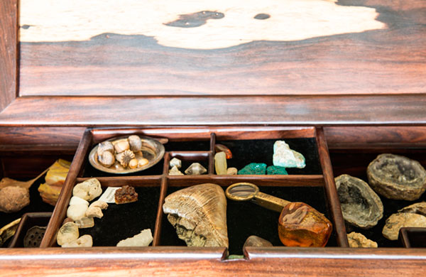 A shadow box with geodes, animal teeth, fossils and gemstones. Every time I visit, I want to sneak in some of my kid's baby teeth knowing that they'll be preserved for perpetuity.