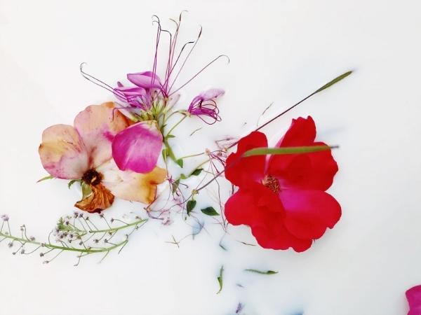 floral-milk-bath.jpg