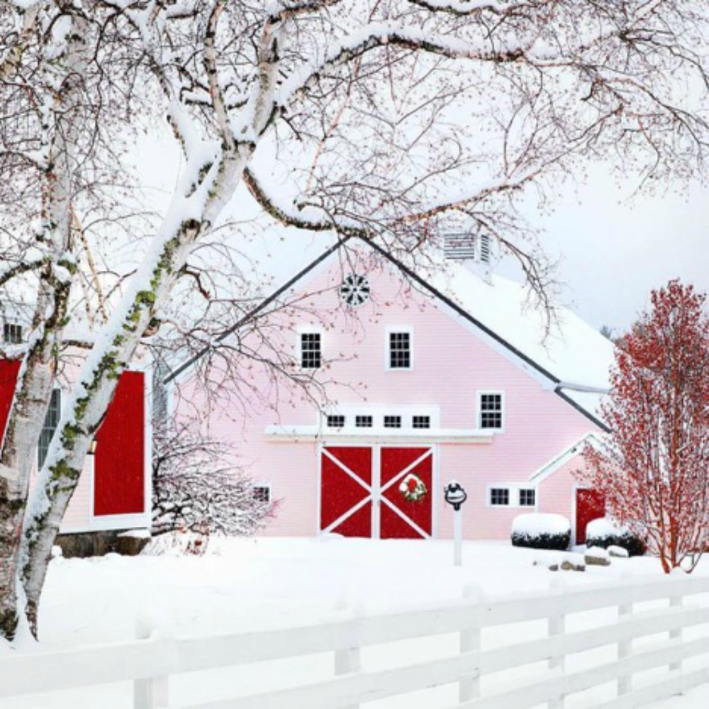 Do you think we could handle the inevitable drive-by traffic if we painted our barn   this color  ? (Thanks Marjorie!)