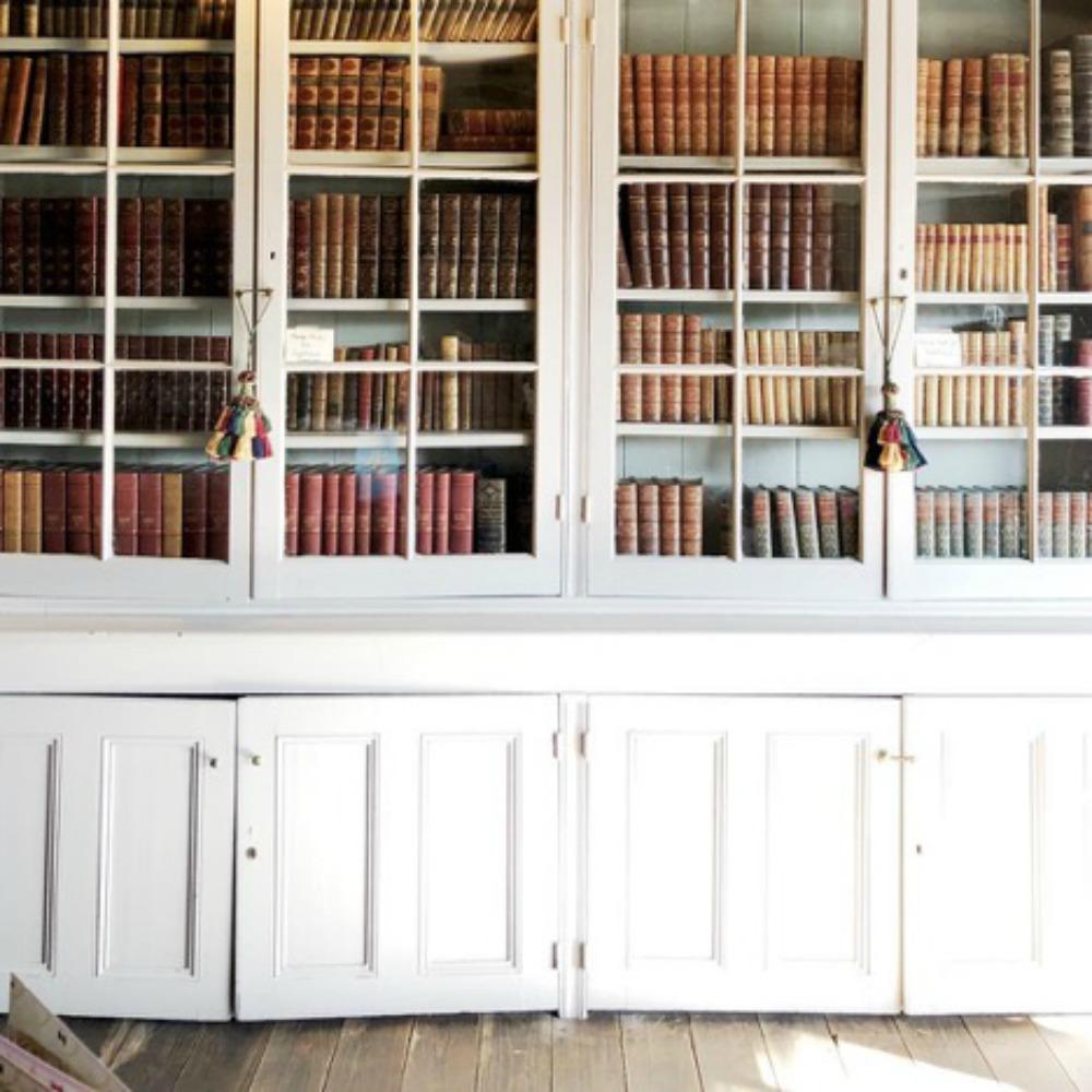 Aspirational   bookshelves  .