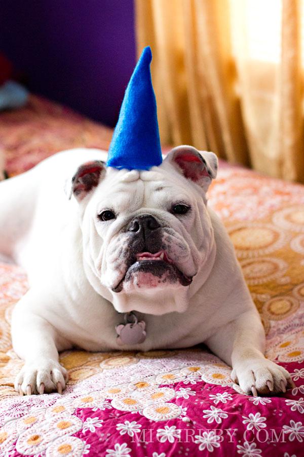 happy freakin' birthday.