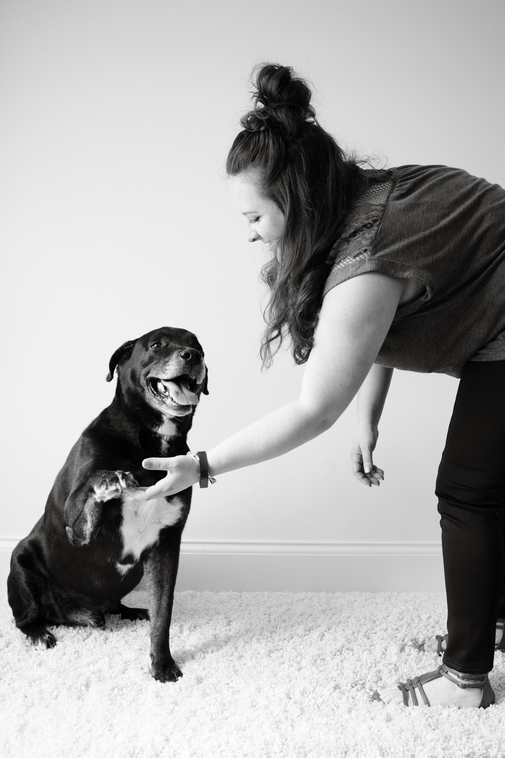 puppy high five | michruby.com