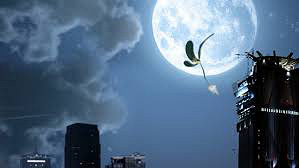 Umpqua Bank 'The Seed and the Moon'