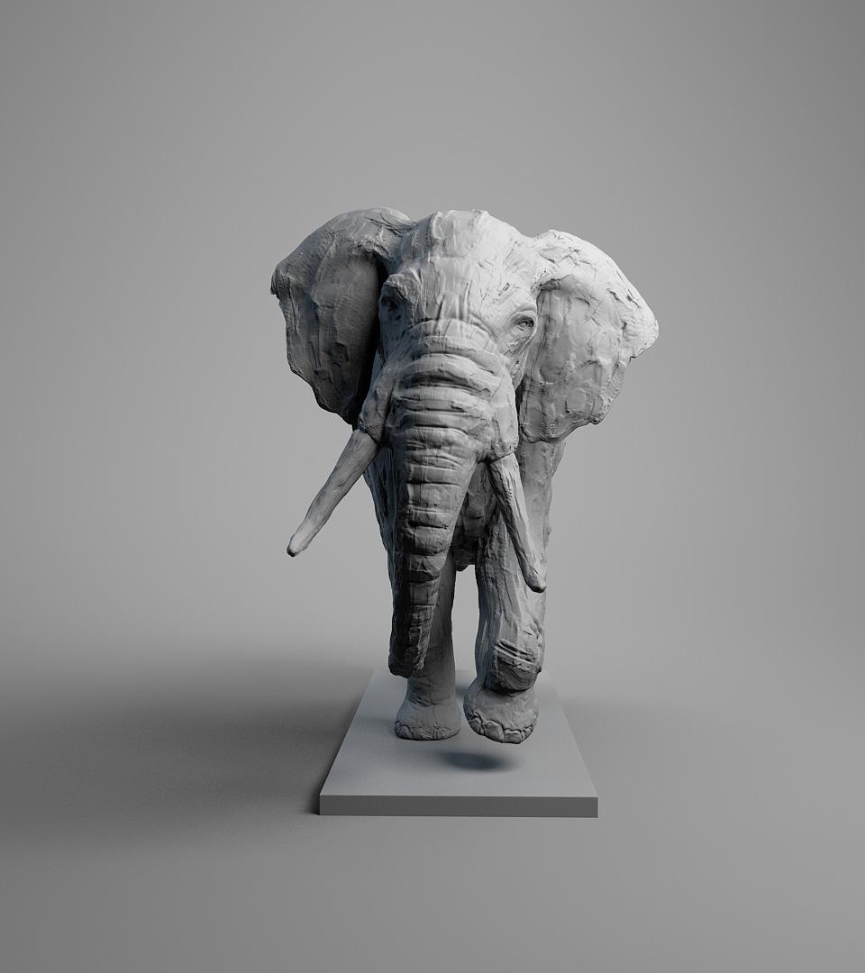 elephantShot2_001.jpg