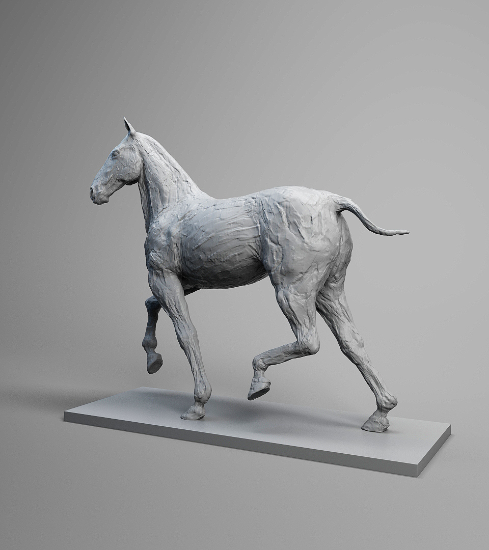 horseShot1_001.jpg