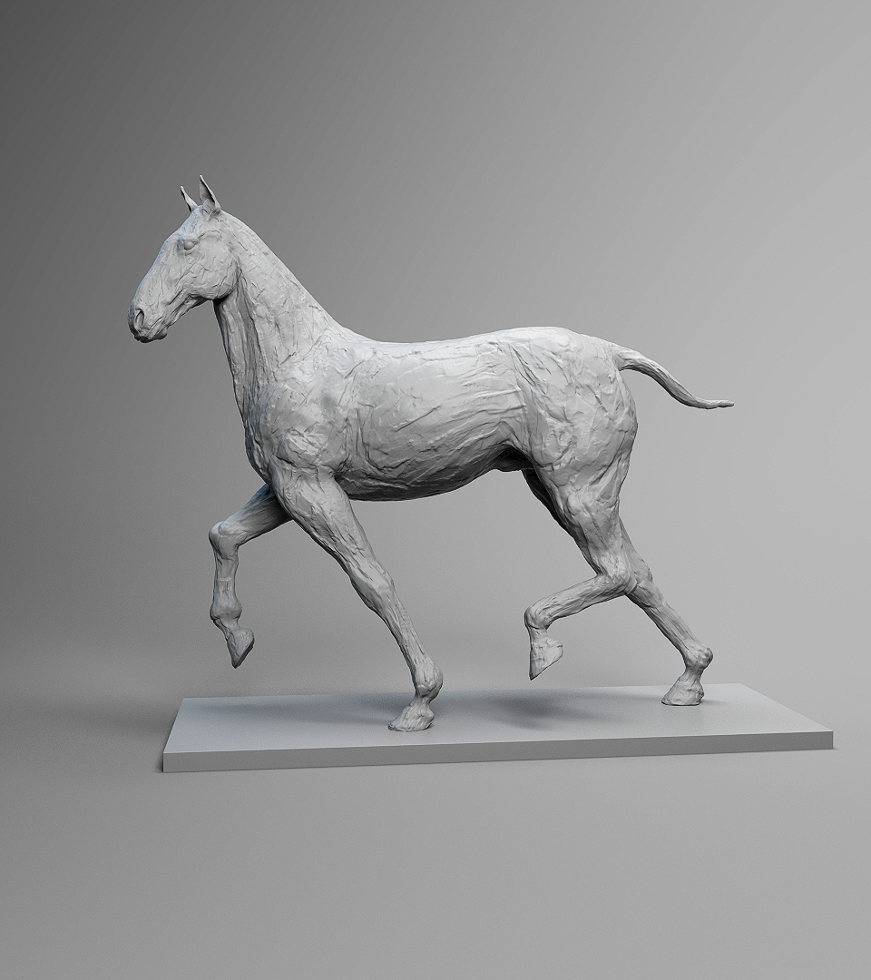 horseShot2_001.jpg