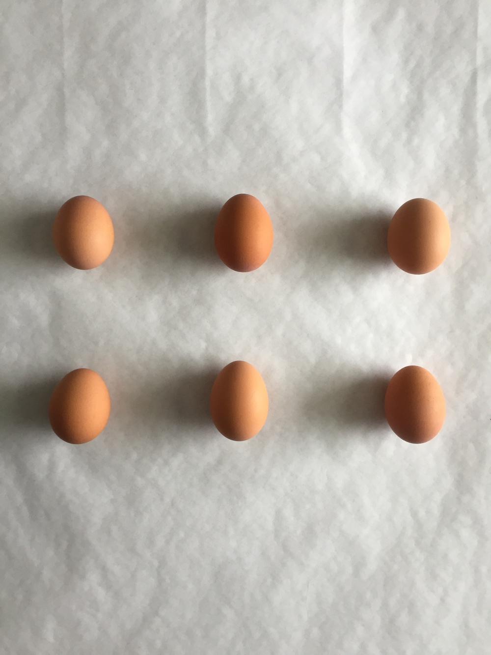Two of these eggs may or may not have been eaten for breakfast immediately following this shoot.