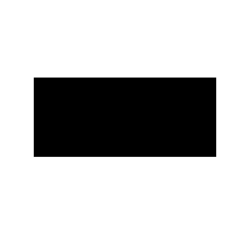 FN_Logo_Web_Transparent.png