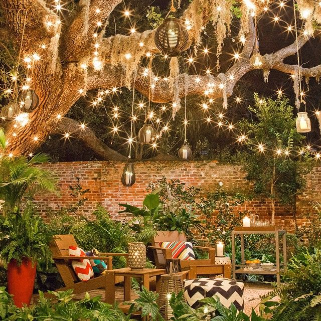 Backyard oasis distracts from busy street.