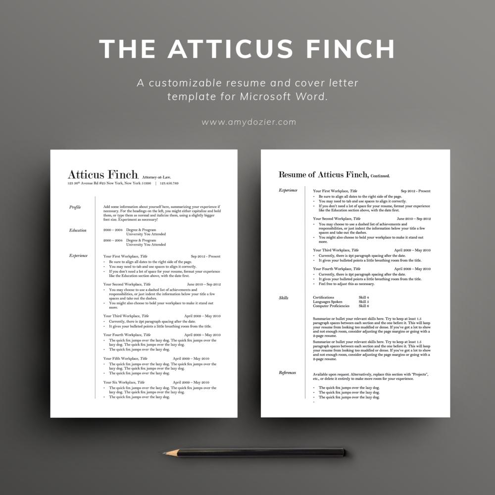 Resume Templates Illustration Design