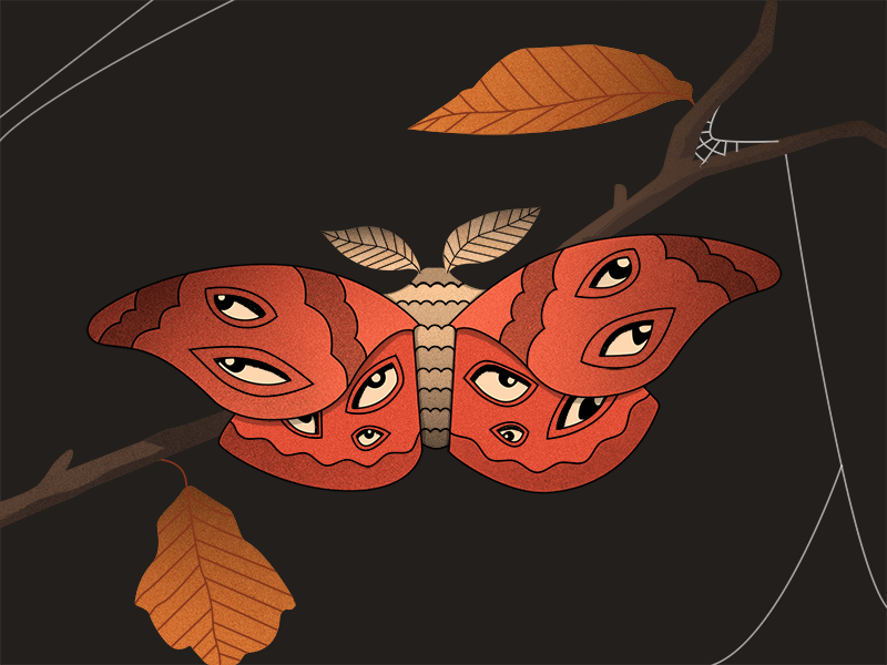 Moth for Dribbble.png