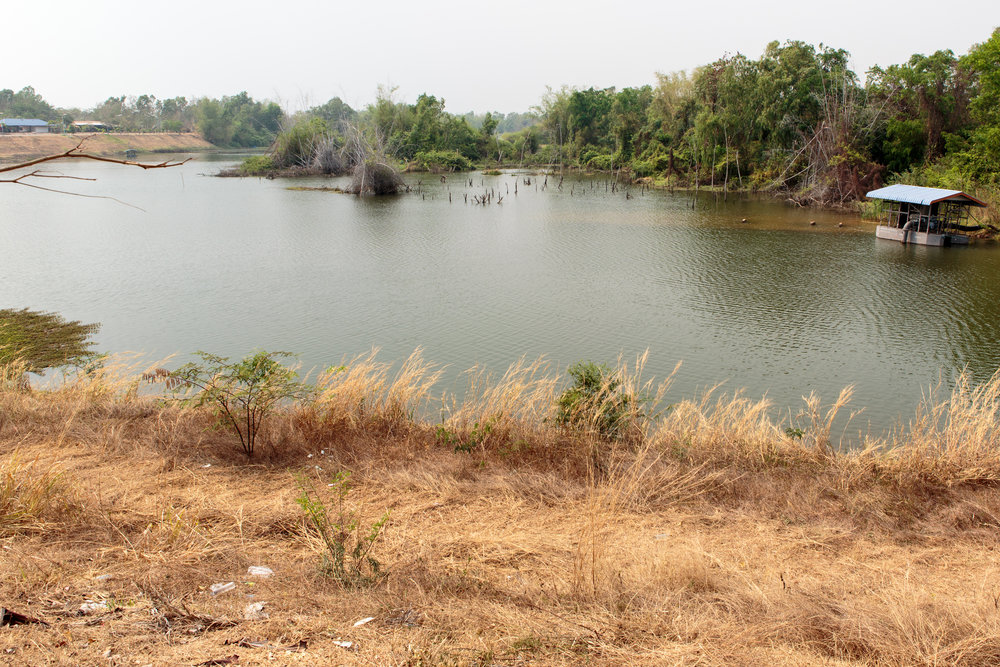 The river Wandee grew up on. It runs into the Mekong, just a few hundreds metres away.