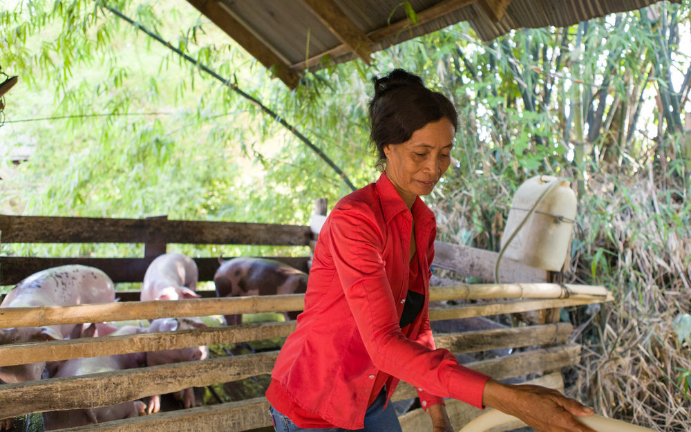 Koeuniyi has borrowed money from the micro-finance group to help raise her pigs.