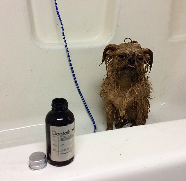 "Henry's ""Ugh, baths"" face"