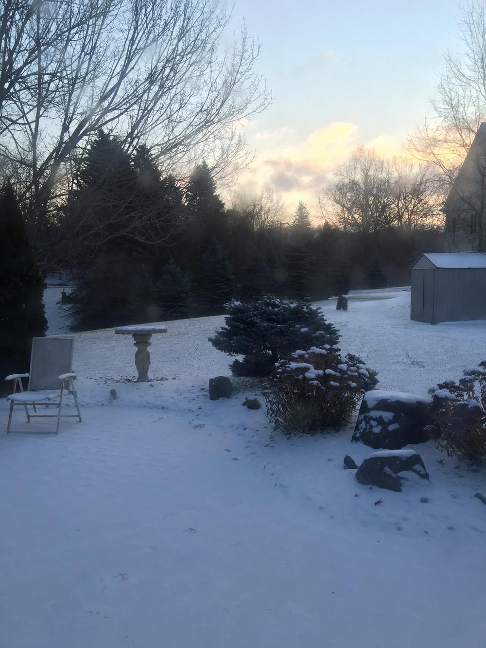 November snow delays fall cleanups, ugh!