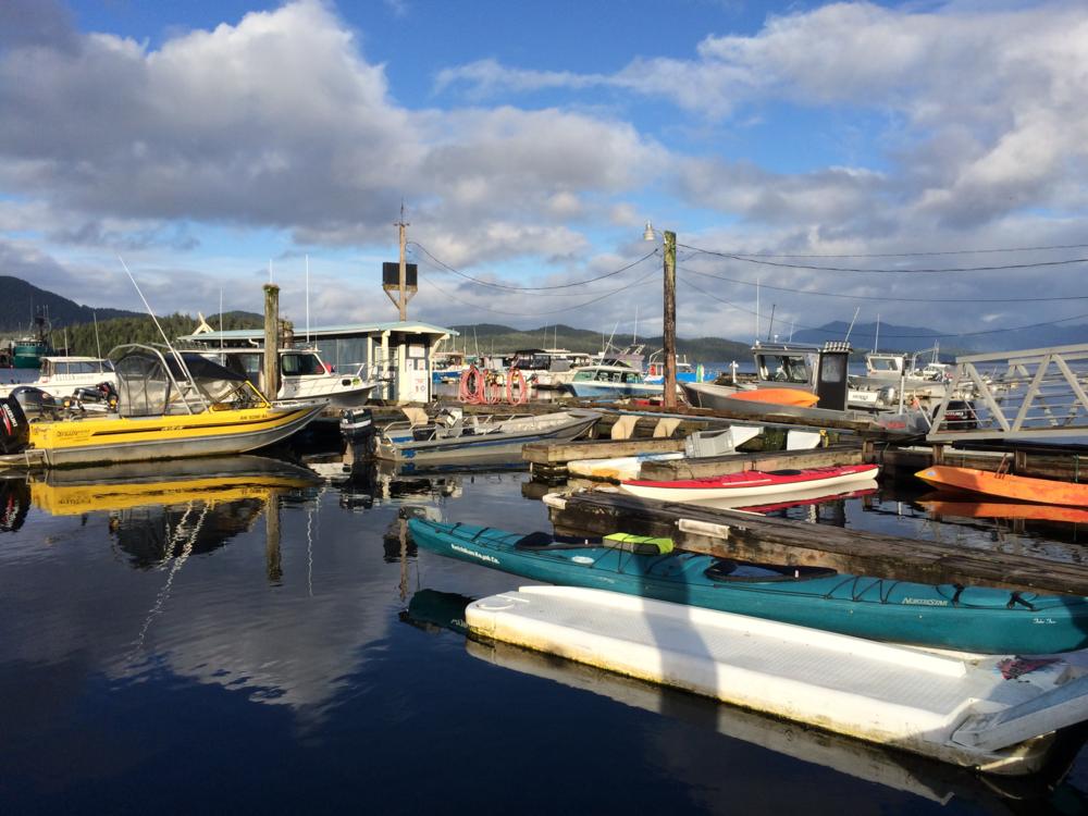 Knudson Cove docks