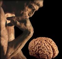 brain thinker4.jpg