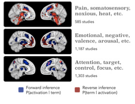 Figure B.  Neurosynth topics involving pain, negative affect, and cognitive control all predict activation within the MFC (blue), but only pain and negative affect are predicted by activation in the same areas (red). Topics were selected from the 50-topic solution. The MFC is outlined in white.