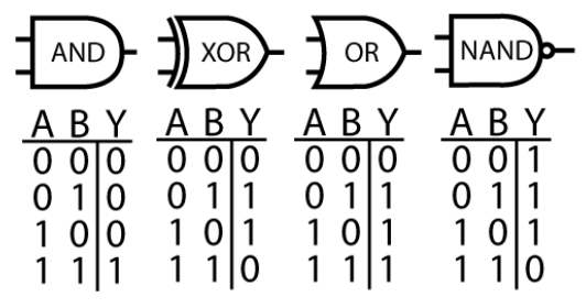 Figure 2:  Computer processors can be understood in terms of logic gates; i.e. what operation each small group of transistors performs. Is it possible to conceptualize neurons of the brain in the same way?