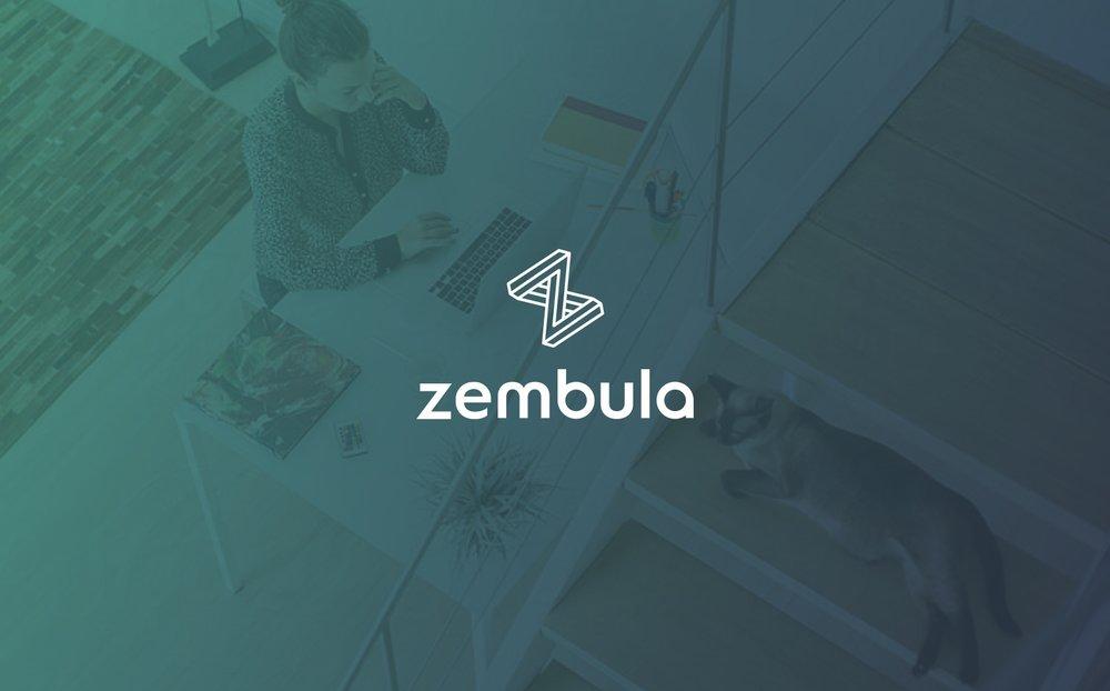 ZembulaBrand_Logo_OnGradient.jpg