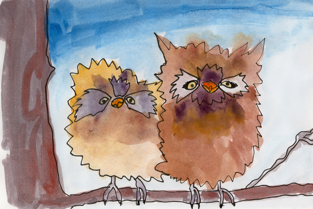 baby owls watercolor.jpg