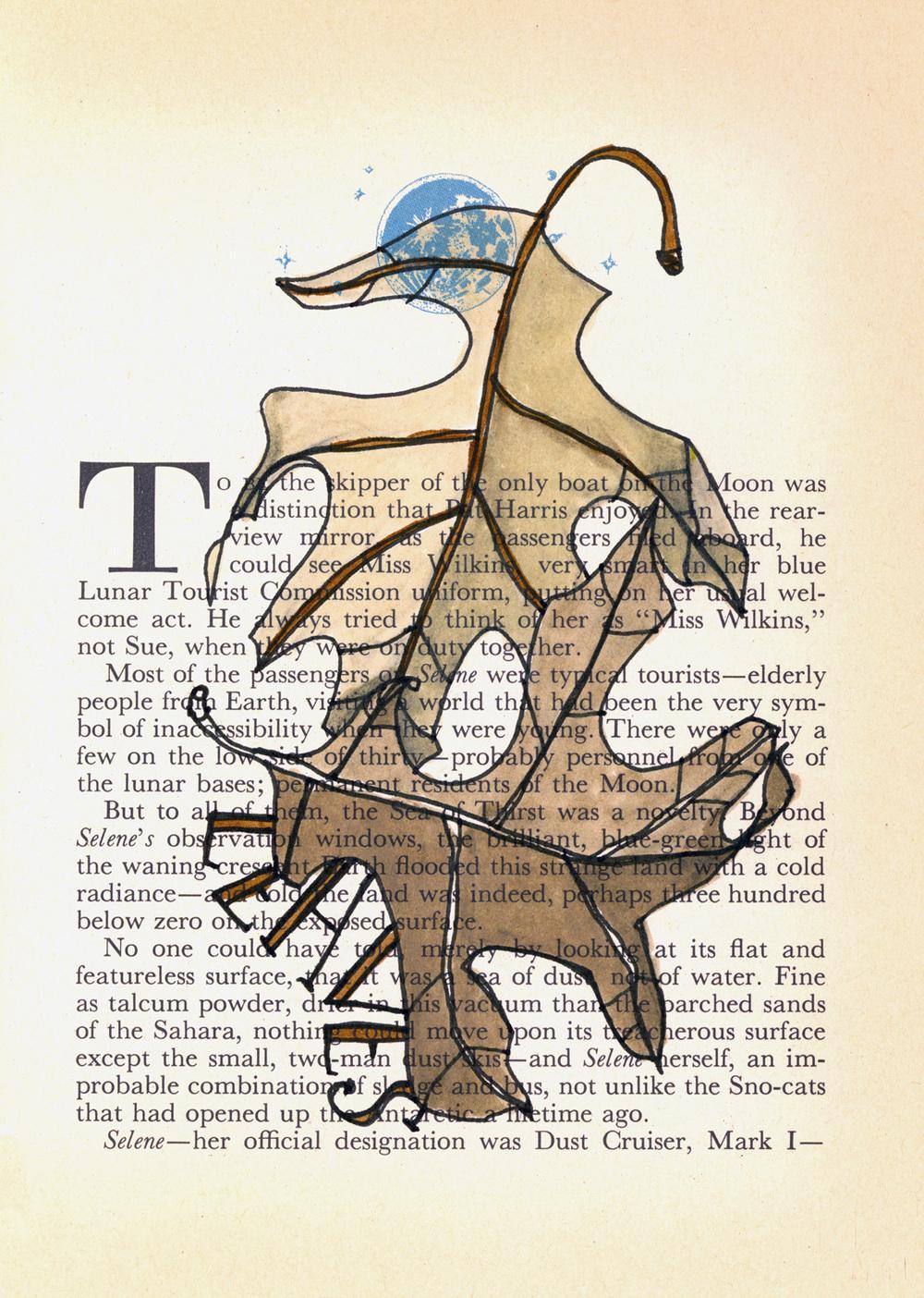 leaves book page.jpg