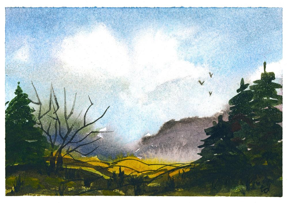 postcard 6.jpg