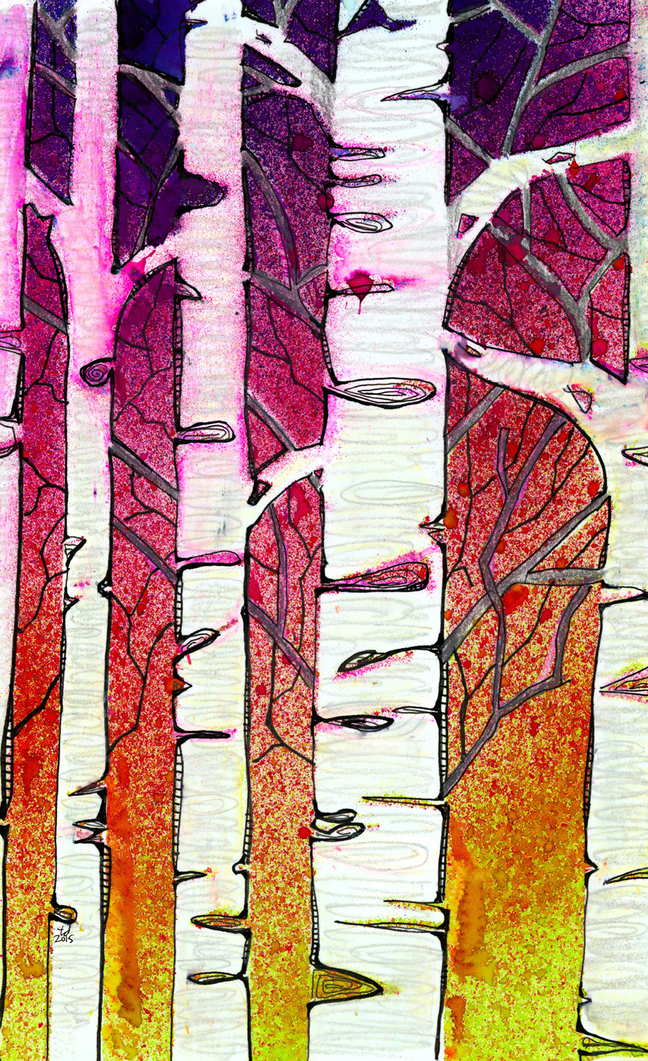 Winter sunset birch.jpg