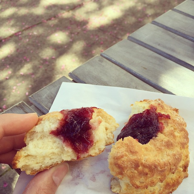 Jam filled biscuits made with enough butter to clog any artery. 🙏