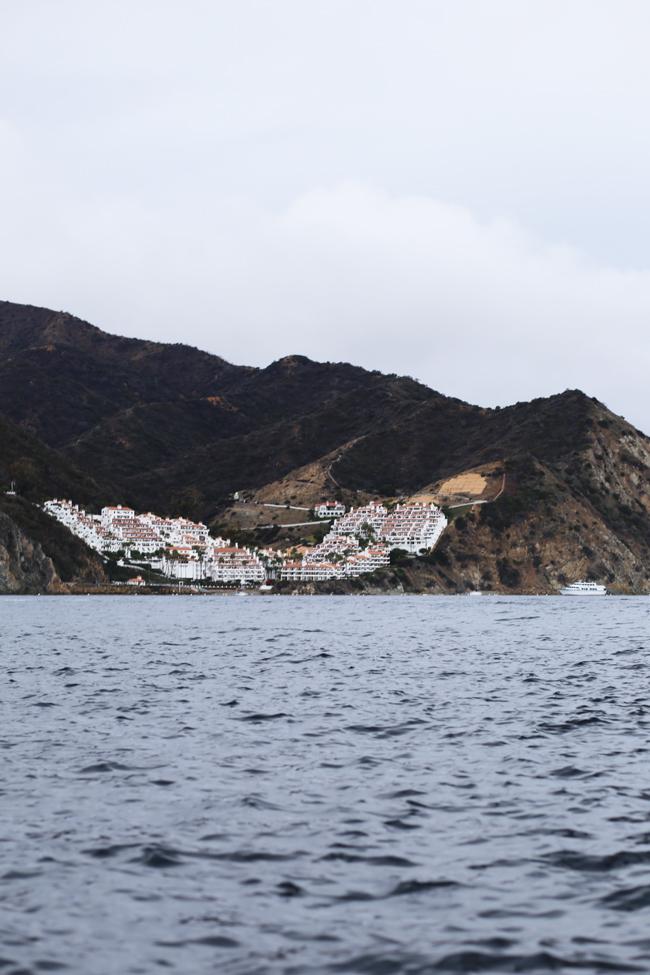 catalina-island-19.jpg