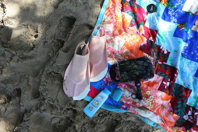 waialea-beach-1.jpg