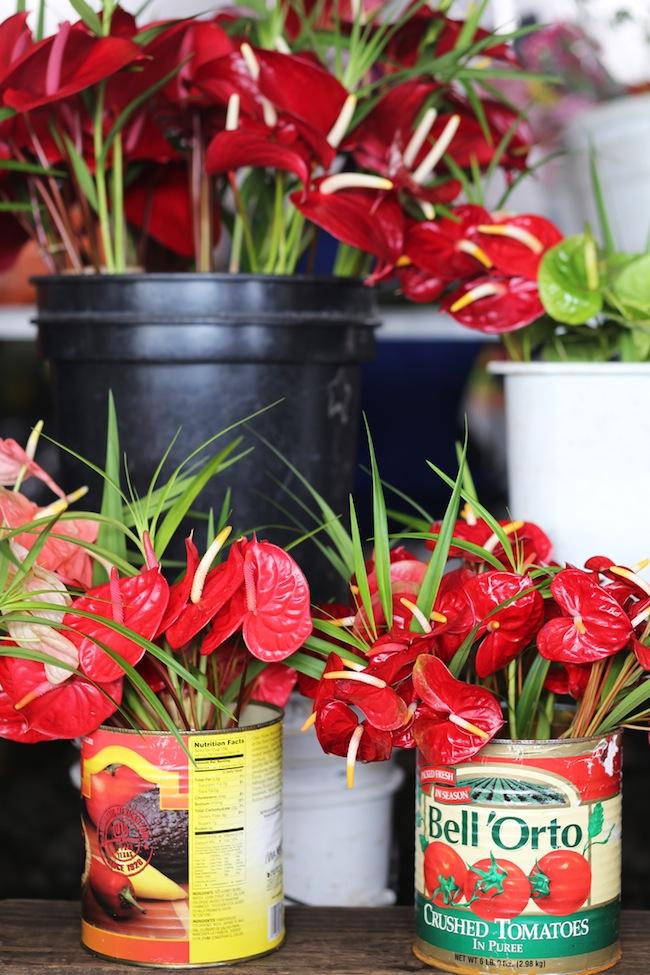 hilo-farmers-market-6.jpg