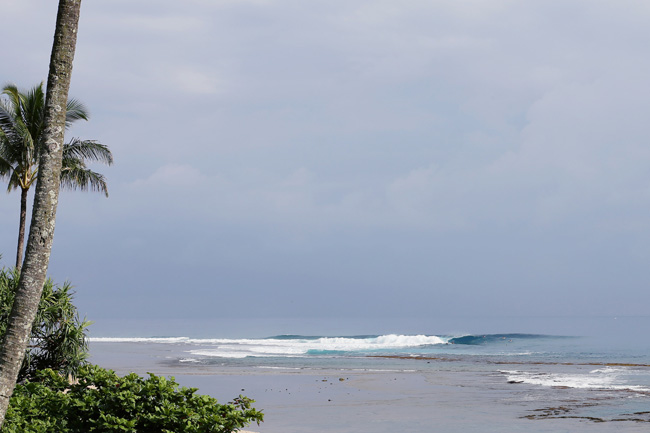 cruising-kauai-13.jpg