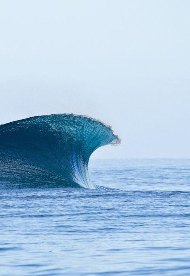 swell-2.jpg