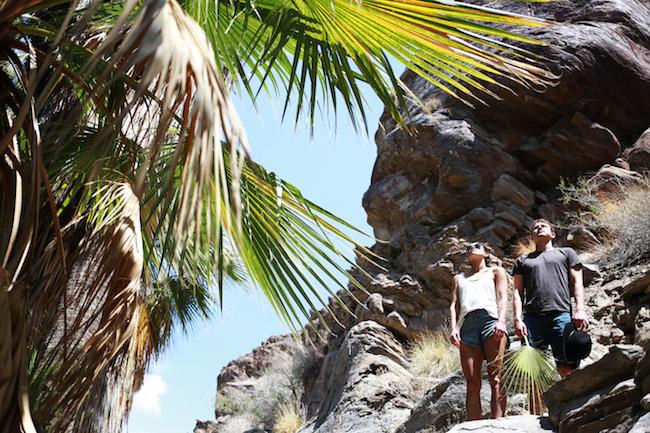 palm-springs-fling-3.jpg