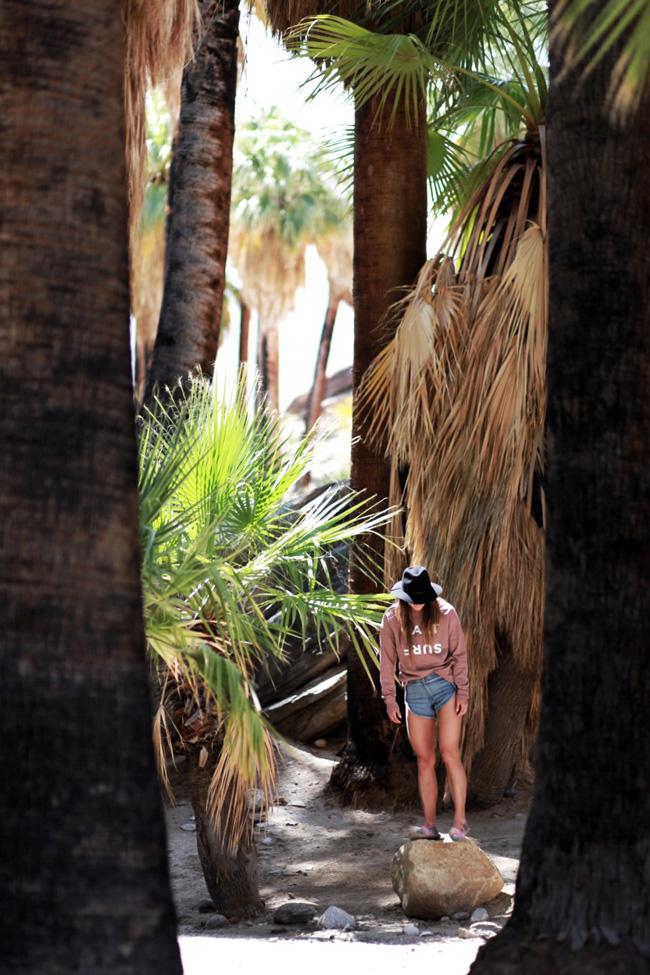 palm-springs-fling-9.jpg