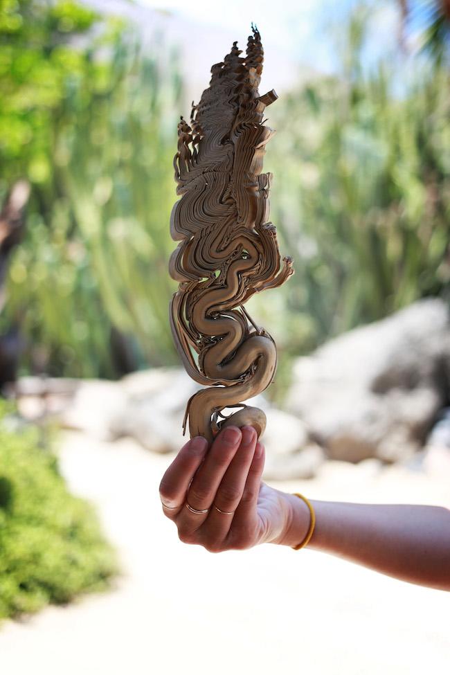 palm-springs-fling-15.jpg