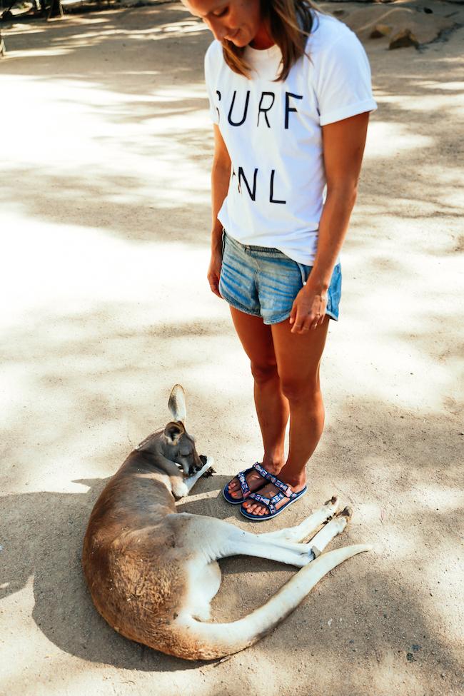 teva-australia-currumbinwildlifesanctuary-15.jpg
