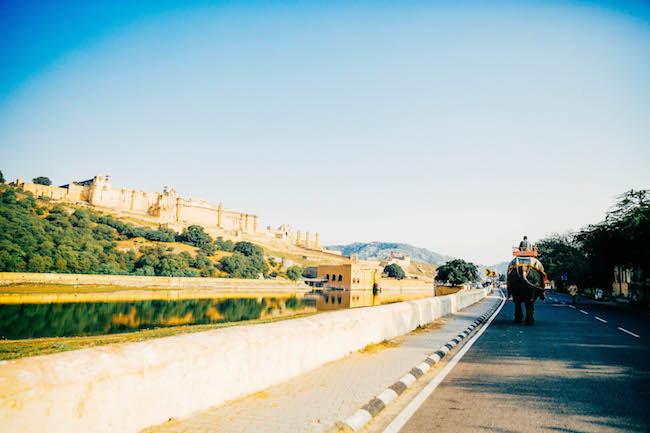 jaipur-160.jpg