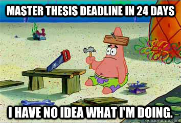 Do master thesis