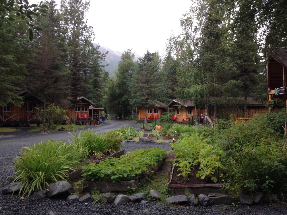 The cabins. Ours is further back, near the river.