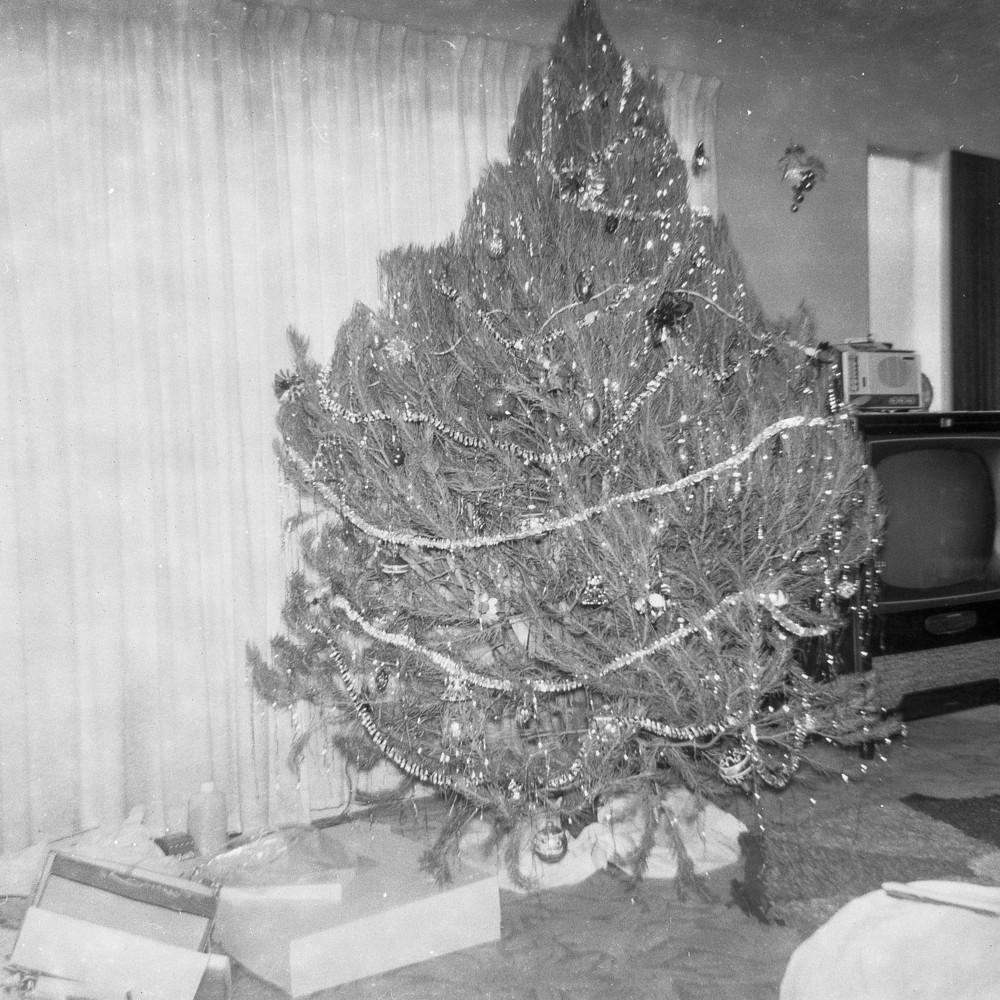 Christmas TreeIG.jpg