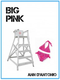Cover-Big-Pink-e1377508361435.jpg