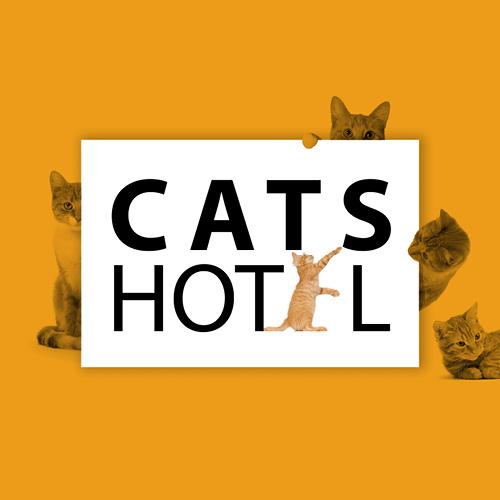 www.thecatshotel.co.uk