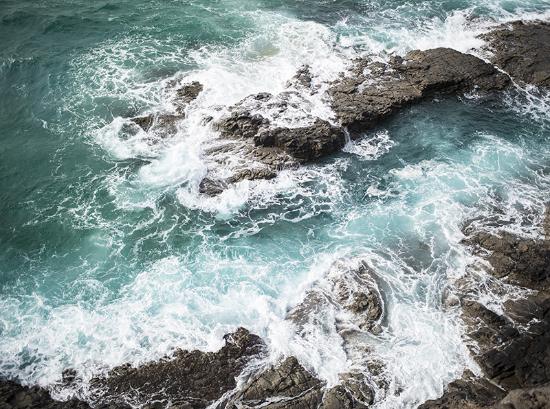 Clean Ocean Project - Fuerteventura