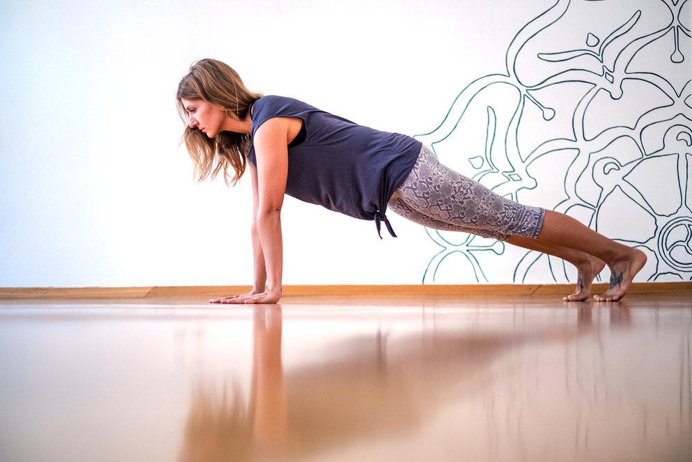 chaturanga plank.jpg
