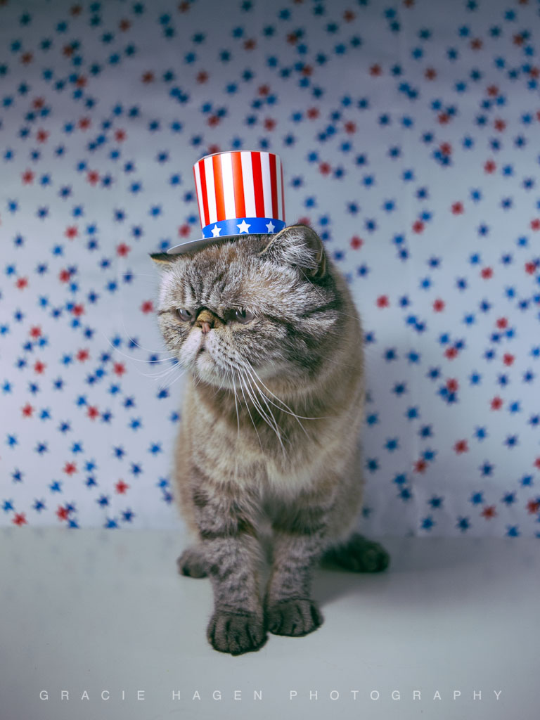 Captain Pancakes Gracie Hagen Photography 4th of July Independence Day